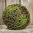 Vine Ball with Moss, 6""