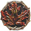 Maple Leaf, Hand Tinted Brass