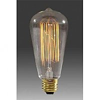 "Edison Base ""Squirrel Cage"" Light Bulb"