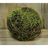 Vine Ball with Moss, 4""