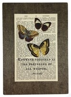 Repurposed Antique Dictionary Page Wall Decor - Aristotle - Butterflies - Knowledge Quote