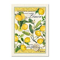 Michel Design Works Cotton Kitchen Towel - Lemons