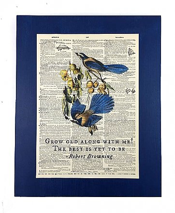 Repurposed Antique Dictionary Page Wall Decor - Birds- Robert Browning- Grow old along with me